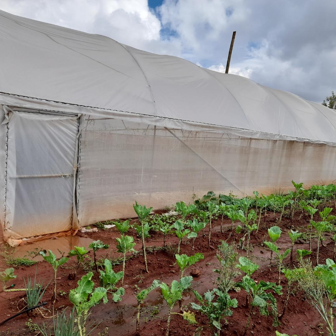 ERCN farming 2 square